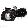 * Moteur Complet 125cc Lifan 1P54FMI pour Dirt Bike