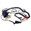Faisceau électrique pour Quad Shineray 300cc STE