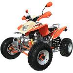 Bashan 250cc BS250S11