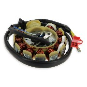 Stator pour Scooter Chinois 125cc (type 2)